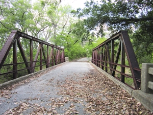 Fall is lovely in the country north of Dallas. This is my cousins' bridge. The creek lies beneath.