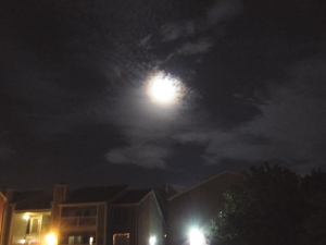 ...then we used this photo I took of September's full moon...
