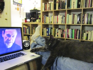 Ronnie James settled himself on Callaghan's legs to catch up on Homeland with us.