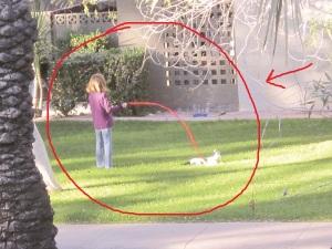 Exhibit C: Girl with cat on leash