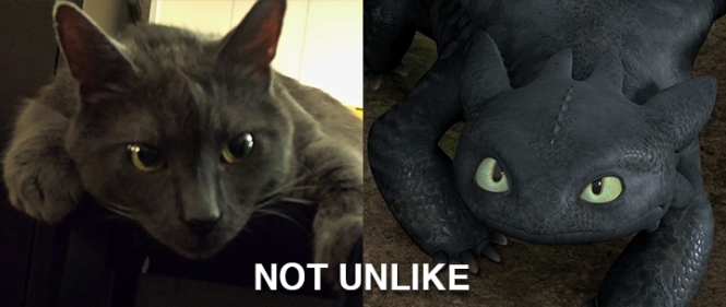 "Ronnie James on the left. Night Fury from ""How to Train Your Dragon"" on the right. NOT UNLIKE."