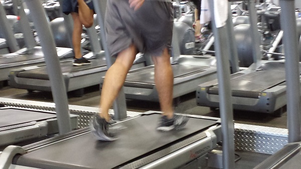 Random calves in action at the gym.