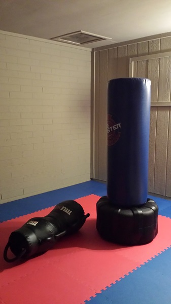 Thanks to the arrival of my XXL WaveMaster heavy bag (standing), our car no longer lives in our garage.