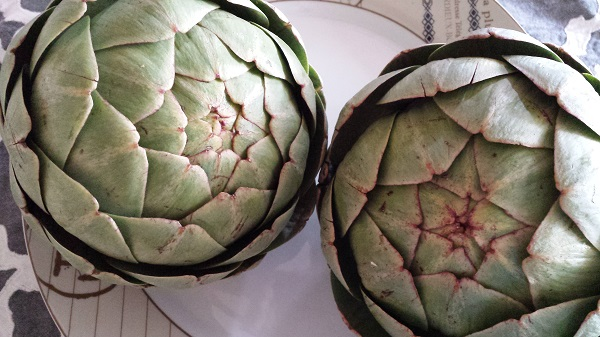 Artichokes... the Food of Life.