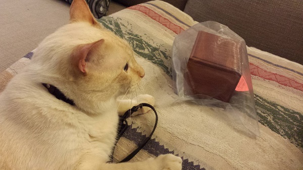 First, Nounours discovered the Wrah-Wrah's collar. He pulled it close to him before turning his attention to the urn.