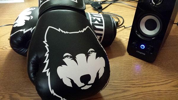 Vehement Wolfheart X2 all-purpose boxing gloves (12 oz)