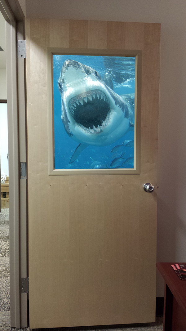 Office as friendly aquarium.