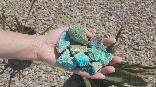 Rocks masquerading as turquoise mixed throughout the gravel in our backyard