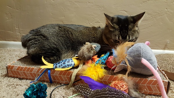Nenette playing E.T. with some of her toys.