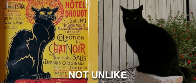 Le Chat Noir on the left. Cita on the right. NOT UNLIKE.