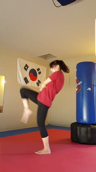 Reverse lunge to knee strike (knee - part 2)