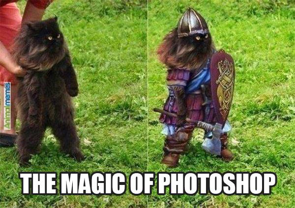 thatasianlookingchick.com-TheMagicOfPhotoshop