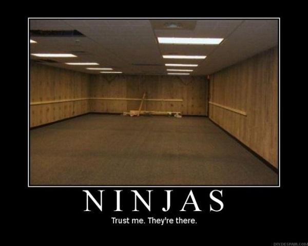 thatasianlookingchick-com-ninjameme