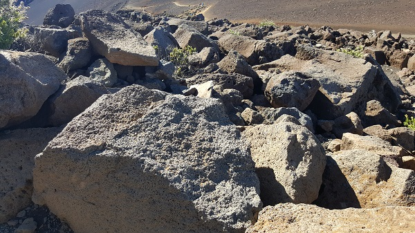 Mid-morning light on the lava rocks
