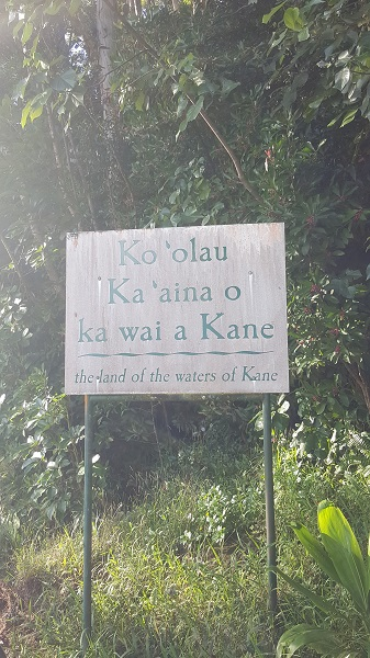 Legend has it that the waters of Kane can heal disease and preserve youth