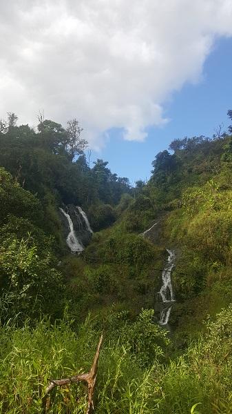 So many little waterfalls.