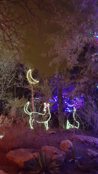 Phoenix Zoo Lights 2016